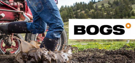 Bogs-Featured-Image-720x340slider