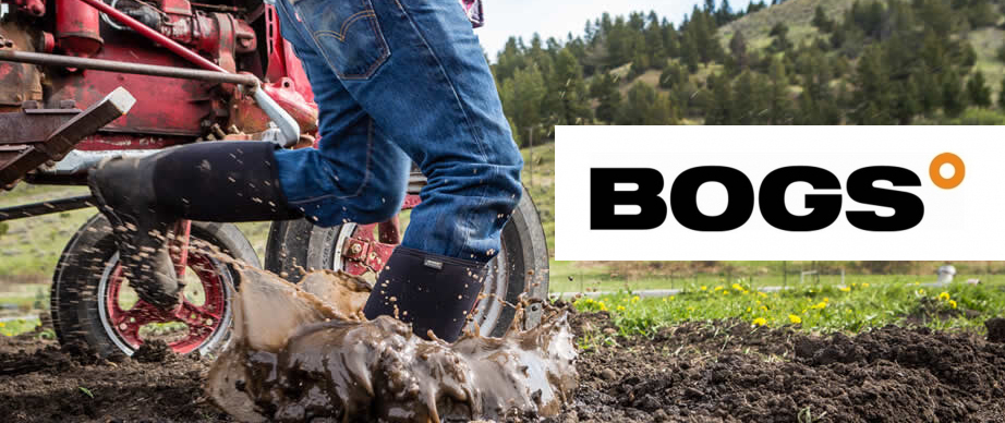 Bogs Featured Image