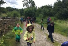 Bingley Walk